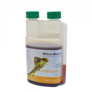Hilton Herbs Immunity Gold for Birds – 500 ml