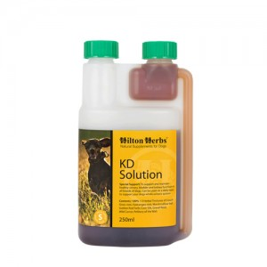 Hilton Herbs KD Solution for Dogs - 500 ml