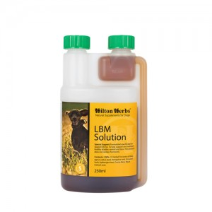 Hilton Herbs LBM Solution for Dogs - 250 ml