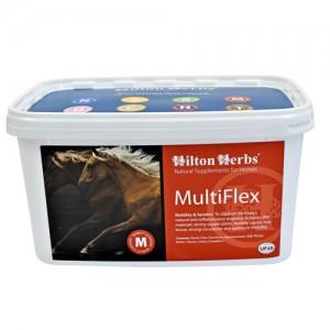 Hilton Herbs MultiFlex for Horses - 2 kg