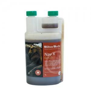 Hilton Herbs Nav X Gold for Horses - 1 liter