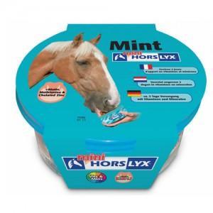 Horslyx Mint Mini – 650 g