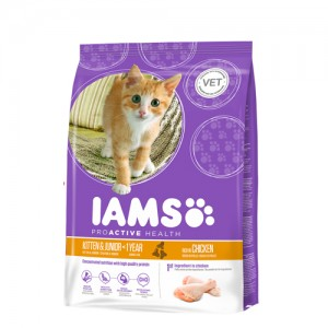 IAMS kitten & junior 10 kg.