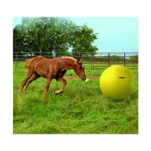 Maximus Power Play Ball - 65 cm