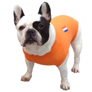 Medical Pet Shirt Hond Oranje – M Plus