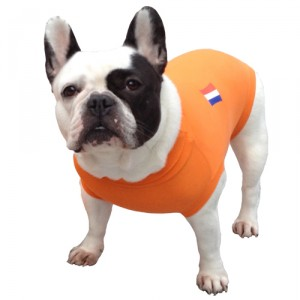 Medical Pet Shirt Hond Oranje - S Plus
