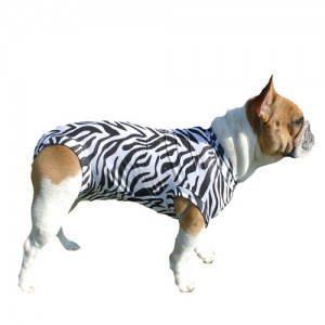 Medical Pet Shirt Hond Zebra Print - M Plus