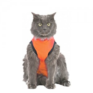Medical Pet Shirt Kat Oranje - S