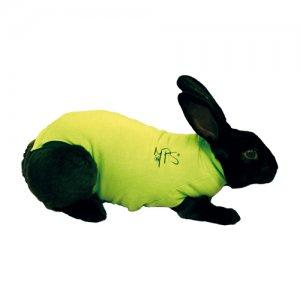 Afbeelding Medical Pet Shirt Konijn XXS