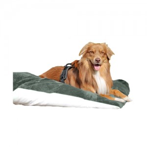 NML Health Bed Comfort Dry Kussen + Cover Stone - 140 x 95 cm