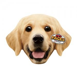 Pet Faces - Golden retriever kopen