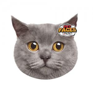 Pet Faces Cat - Britse korthaar kopen