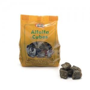 Quiko Alfalfa Cubes - 500 gram