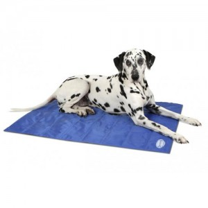 Scruffs Cooling Mat – Blauw – L
