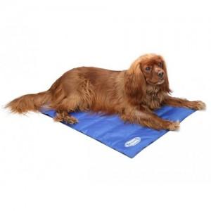 Scruffs Cooling Mat – Blauw – M