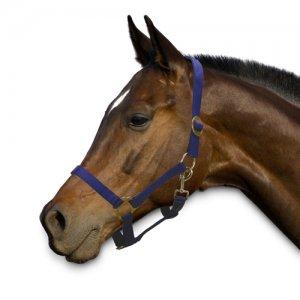 Sectolin Halfter Economic - Pony - Blau