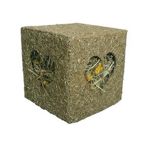 Rosewood Knaag Kubus – 12,5 x 12,5 x 12,5 cm