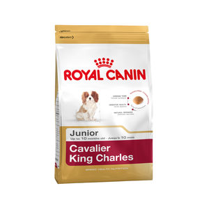 Royal Canin Cavalier King Charles Junior – 1,5 kg