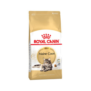 Royal Canin Maine Coon Adult - 4 kg kopen