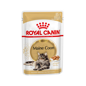 Royal Canin Maine Coon Adult Wet - 12 x 85 g