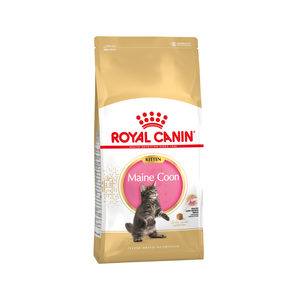 ROYAL CANIN KITTEN MAINE COON KATTENVOER #95;_10 KG