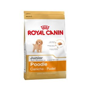 Royal Canin Poodle Junior – 3 kg