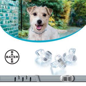Seresto Reflector - Kleine Hond