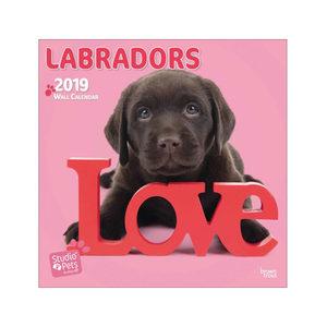 Afbeelding Studio Pets Lovable Labrador Kalender 2019