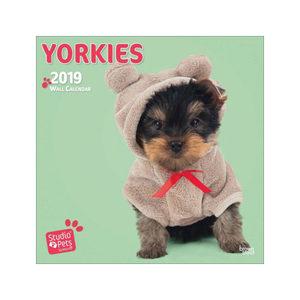 Studio Pets Yorkie Kalender 2019