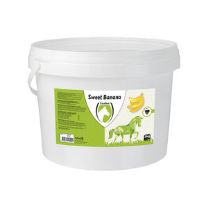 Sweet Banana Blocks - 3 kg