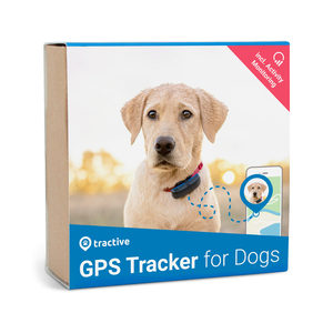 Tractive GPS Tracker incl. Activity Monitoring – Hond