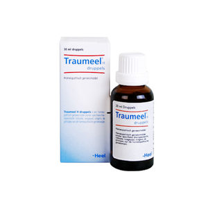 Traumeel S Druppels - 100 ml
