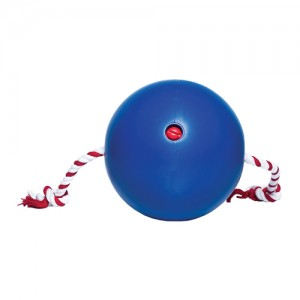 Tuggo Water-Weighted Ball - (7.1 inch) 18 cm - Blauw