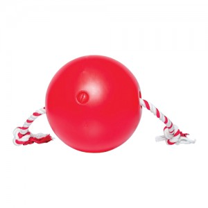 Tuggo Water-Weighted Ball - (9.8 inch) 25 cm - Rood