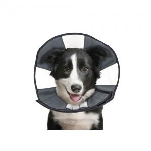 ZenPet Zen Collar - L