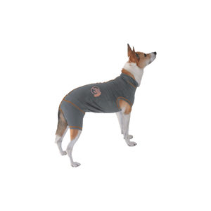 VetGood Protective Recovery Pet Suit – Hond – S Plus