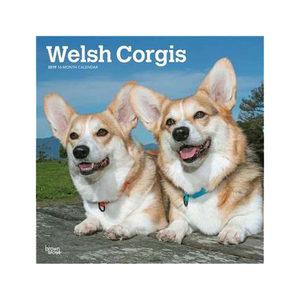 Welsh Corgi Kalender 2019